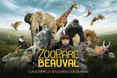 L'attribut alt de cette image est vide, son nom de fichier est 30284-ZooParc_Beauval.jpg.